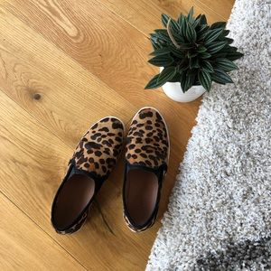 Joie slip on Kidmore sneakers in leopard